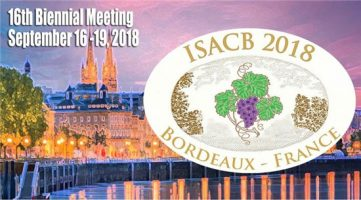Xeltis' restorative technology featured at ISACB